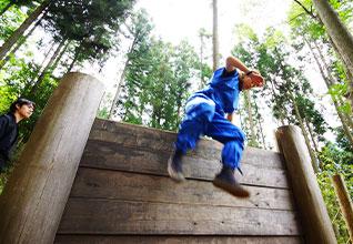 Ninja Forest