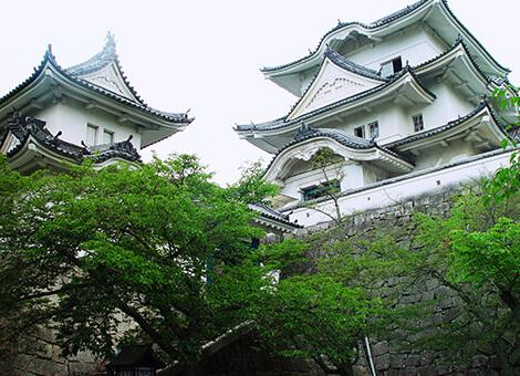 Exploring Iga Ueno
